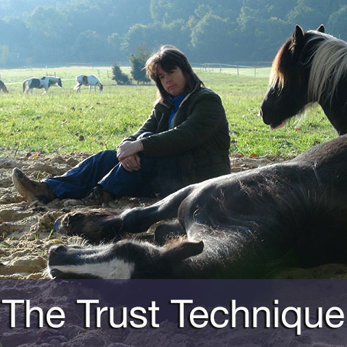 The Trust Technique